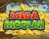 Mega Moolah Jackpot mit über 10 Millionen prall gefüllt